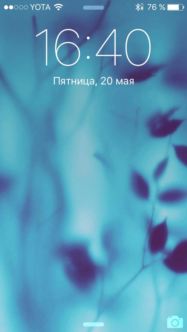 IMG_5711
