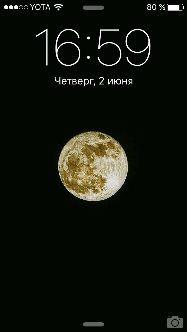IMG_5860