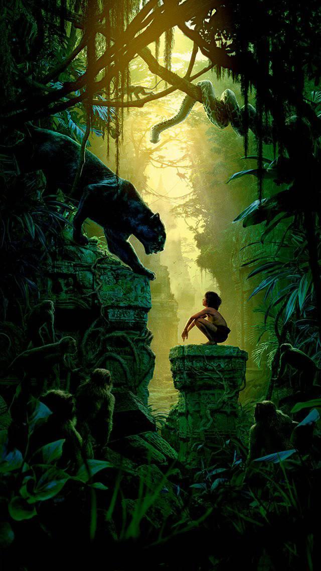 nature-junglebook-animal-iphone-5