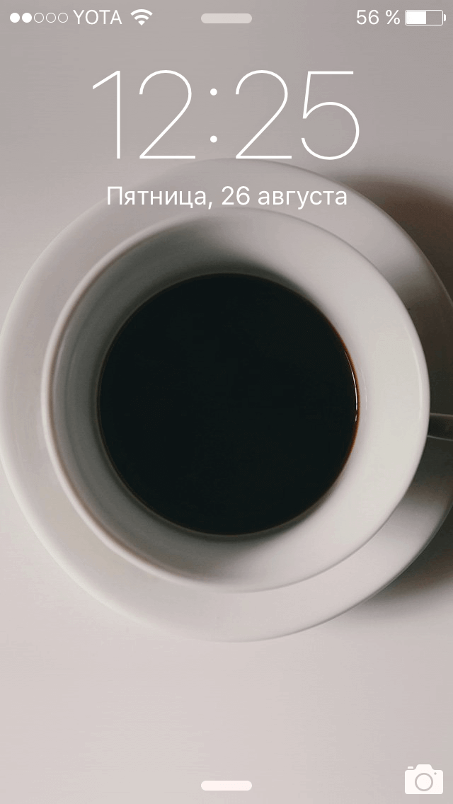 IMG_7167