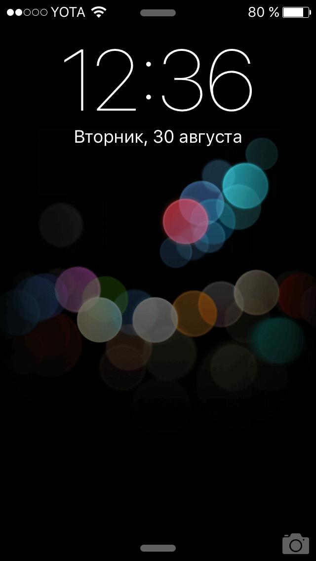 IMG_7236