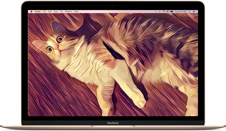 Как пользоваться фильтрами Prisma на Mac или Windows