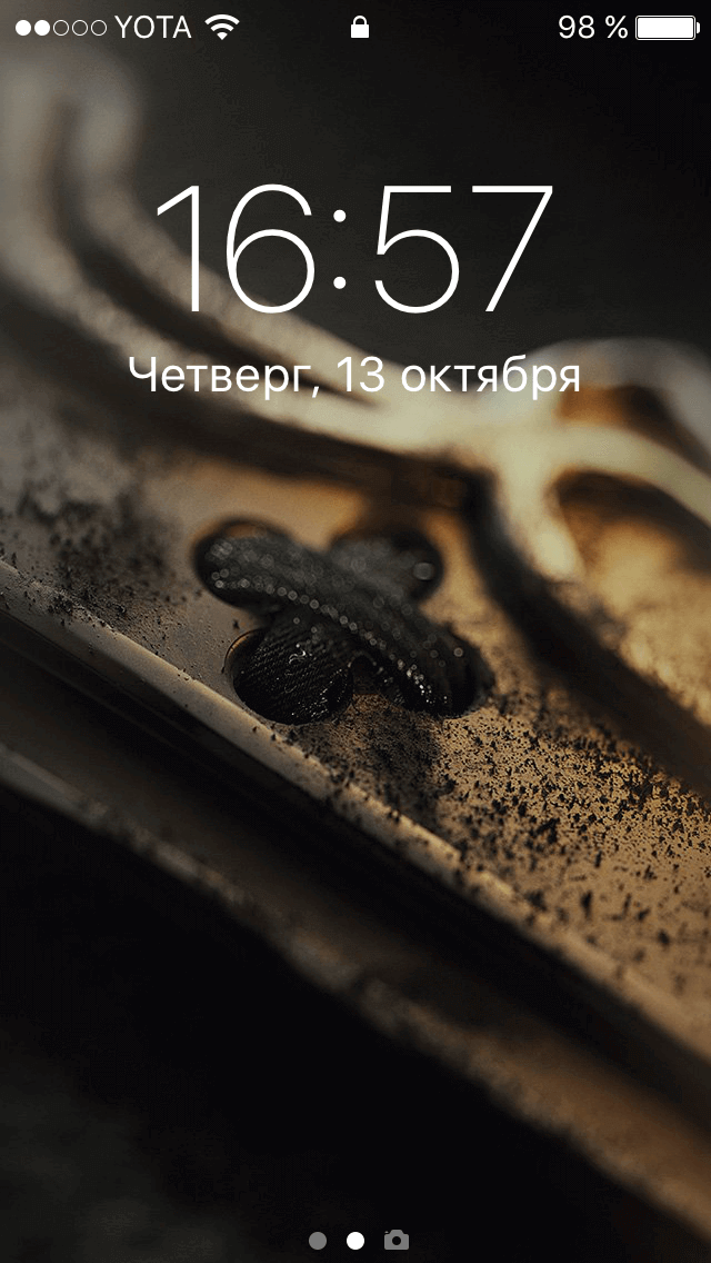 img_7941