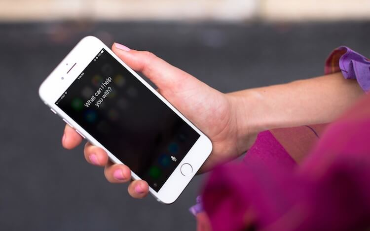 Чему Apple научила Siri в iOS 13: 5 главных нововведений